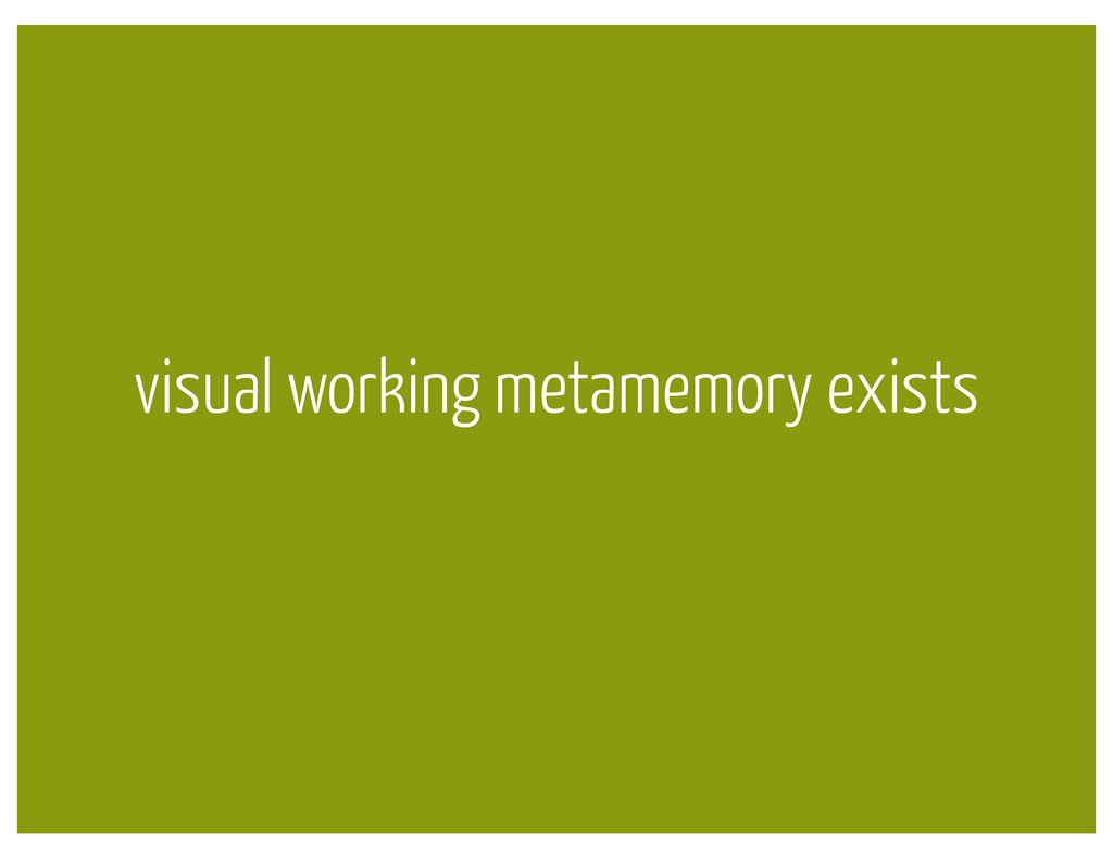 visual working metamemory exists