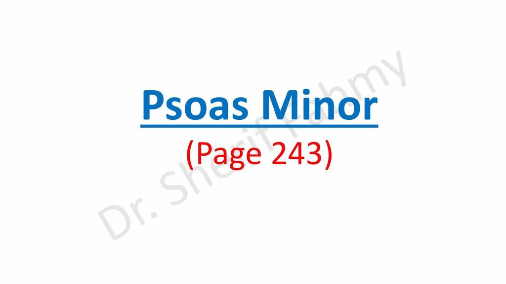 Psoas Minor (Page 243)