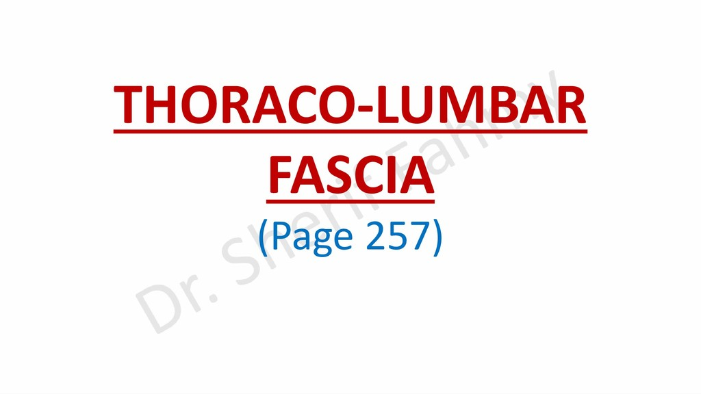 THORACO-LUMBAR FASCIA (Page 257)