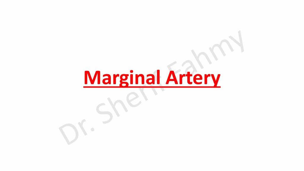 Marginal Artery
