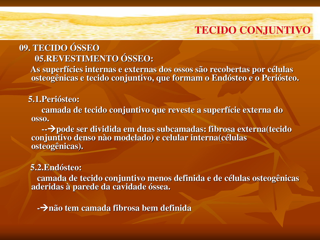 09. TECIDO ÓSSEO 05.REVESTIMENTO ÓSSEO: As supe...