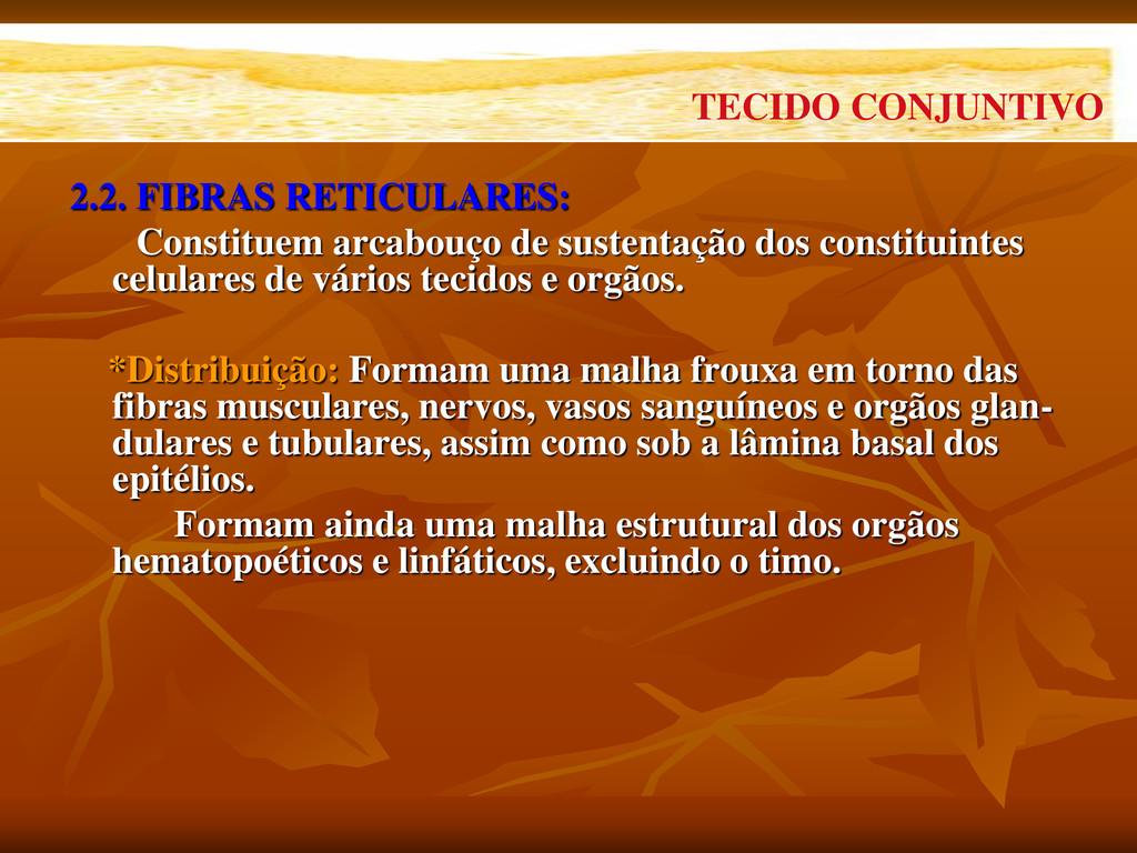 2.2. FIBRAS RETICULARES: Constituem arcabouço d...