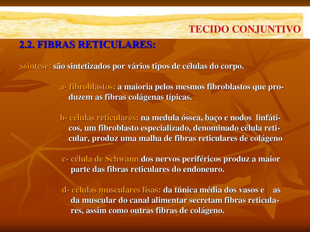 2.2. FIBRAS RETICULARES: >síntese: são sintetiz...