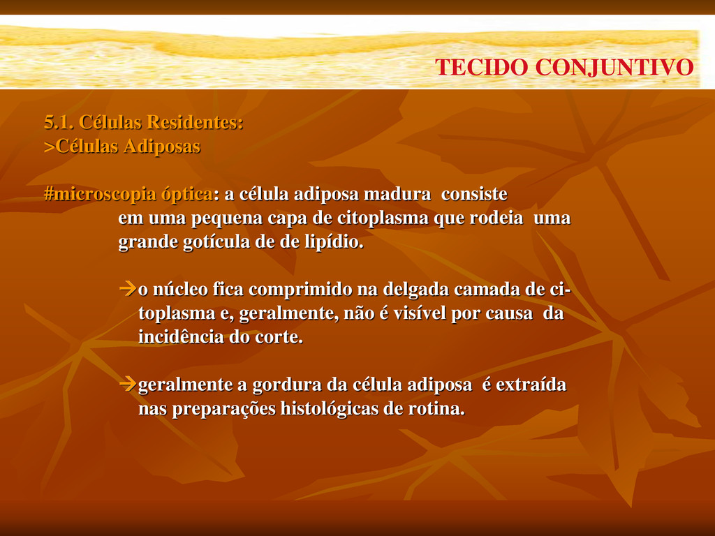 5.1. Células Residentes: >Células Adiposas #mic...