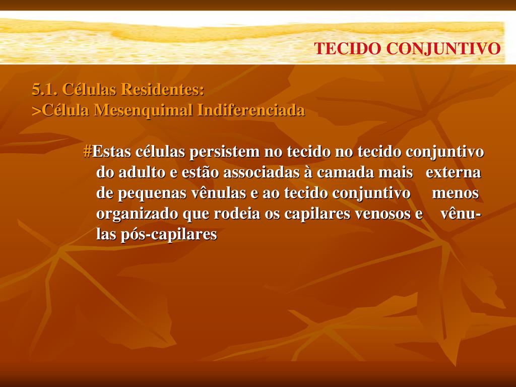 5.1. Células Residentes: >Célula Mesenquimal In...