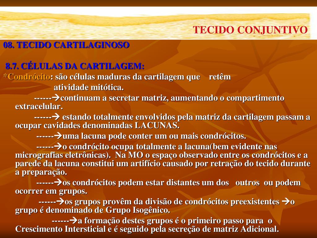 08. TECIDO CARTILAGINOSO 8.7. CÉLULAS DA CARTIL...