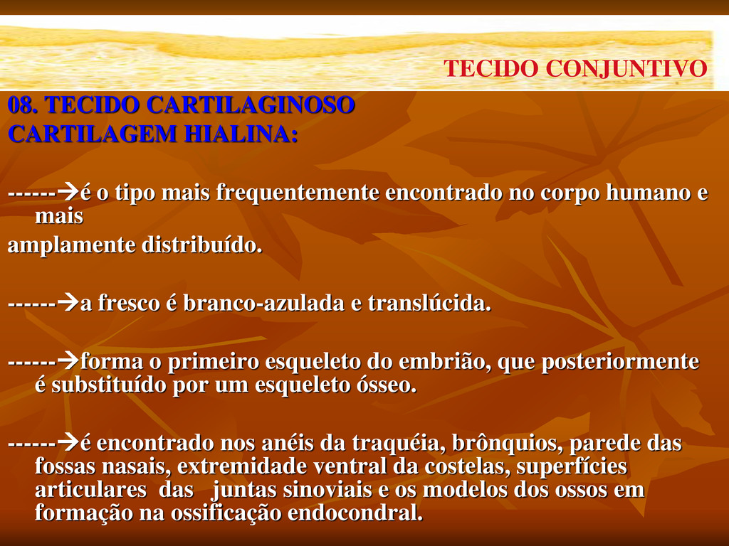08. TECIDO CARTILAGINOSO CARTILAGEM HIALINA: --...