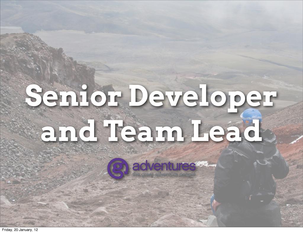 Senior Developer and Team Lead Friday, 20 Janua...