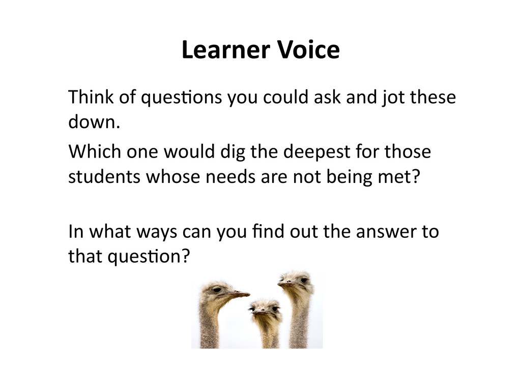 LearnerVoice Thinkofques@onsyoucouldas...