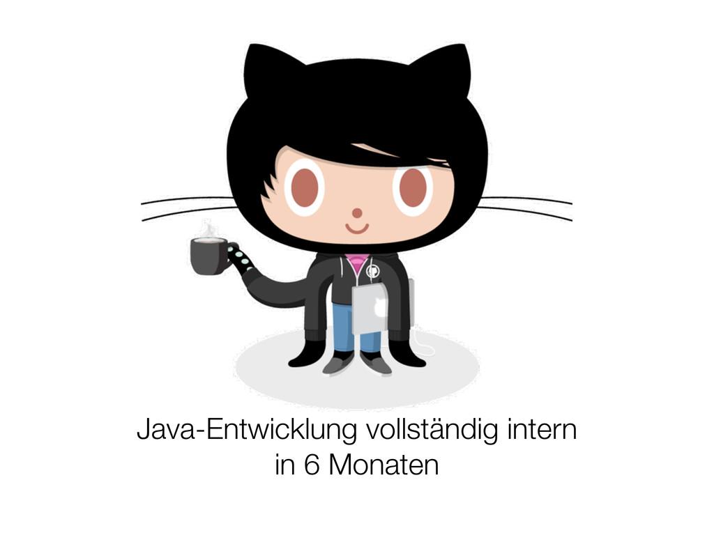 Java-Entwicklung vollständig intern in 6 Monaten
