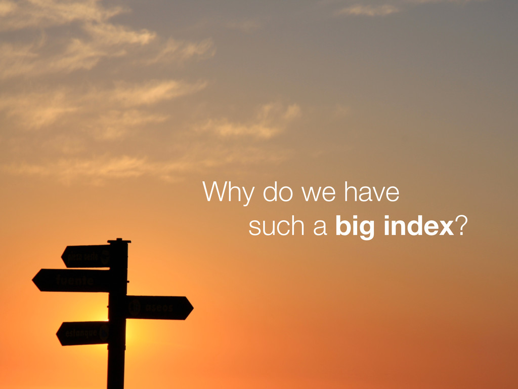 Why do we have such a big index?
