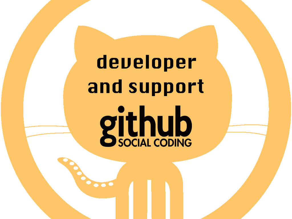 developer and support