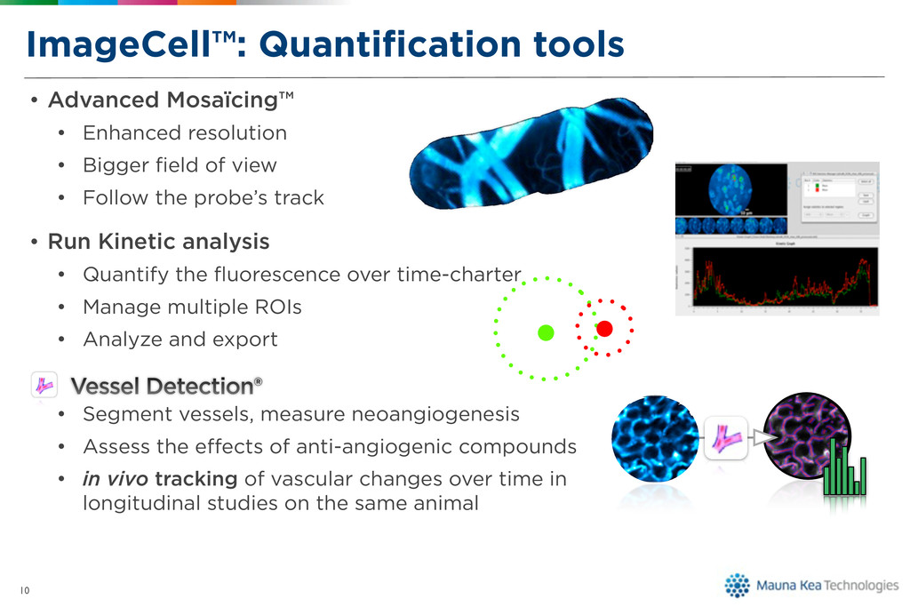 ImageCell™: Quantification tools • Advanced Mosa...