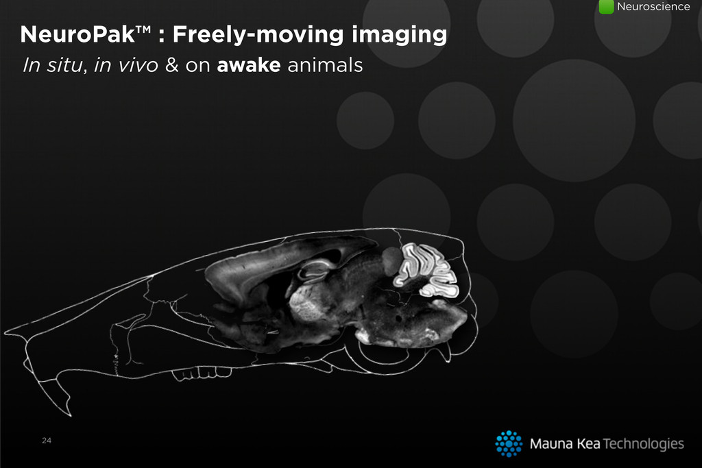 24 In situ, in vivo & on awake animals NeuroPak...