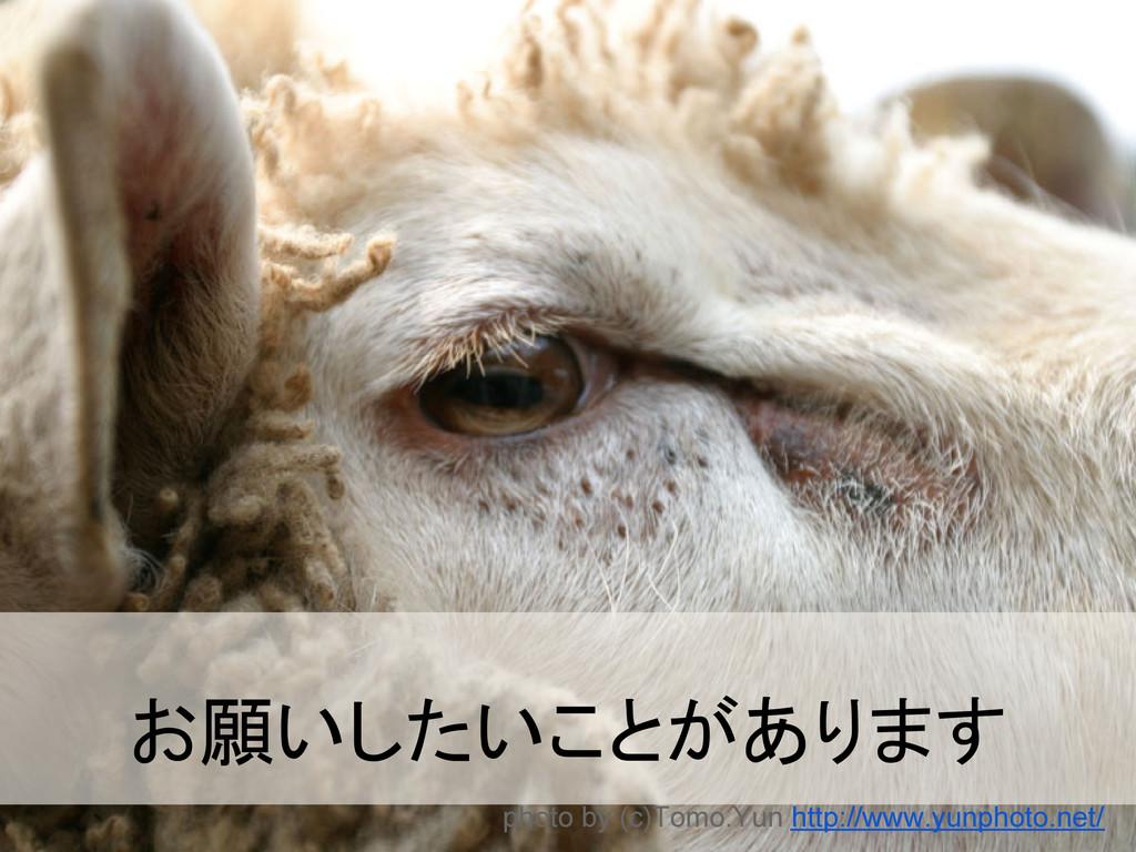 お願いしたいことがあります photo by (c)Tomo.Yun http://www.y...