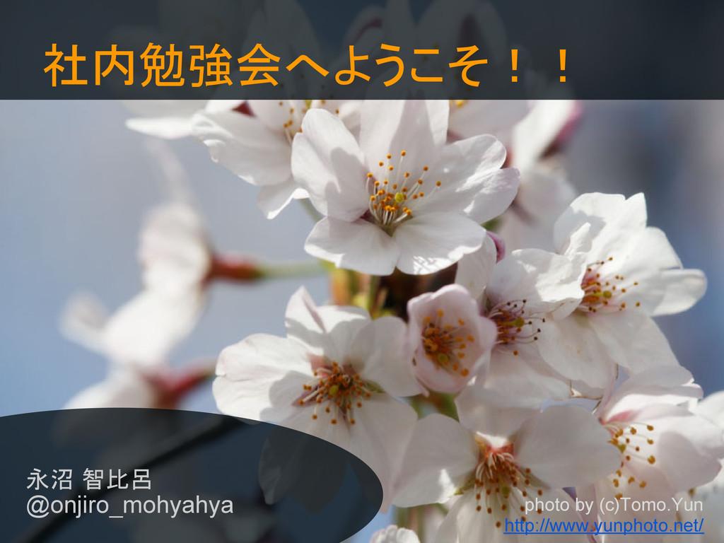 社内勉強会へようこそ!! 永沼 智比呂 @onjiro_mohyahya photo by (...