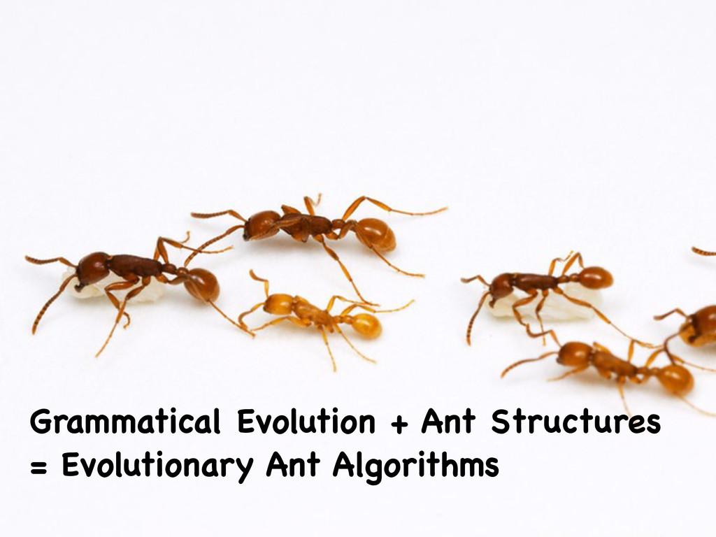 Grammatical Evolution + Ant Structures = Evolut...