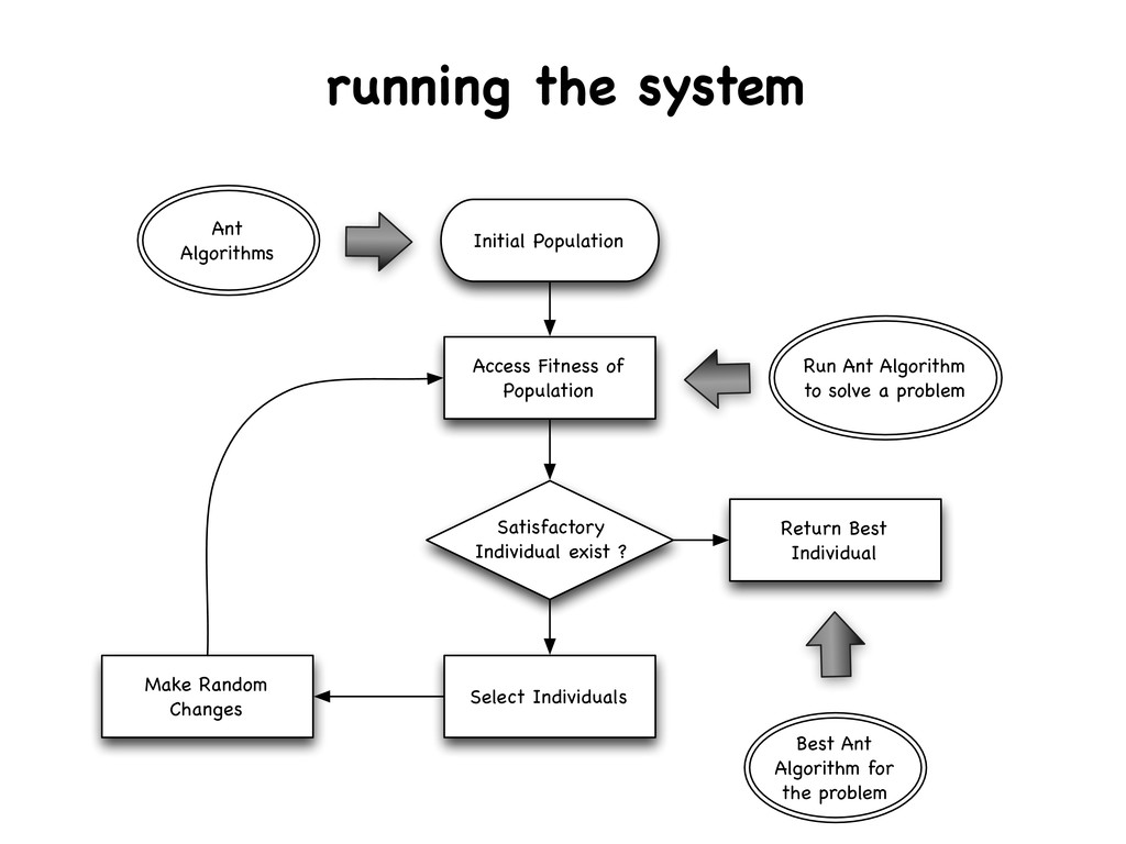 running the system Initial Population Access Fi...