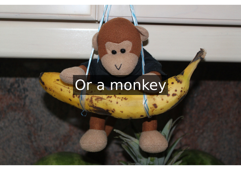 Or a monkey