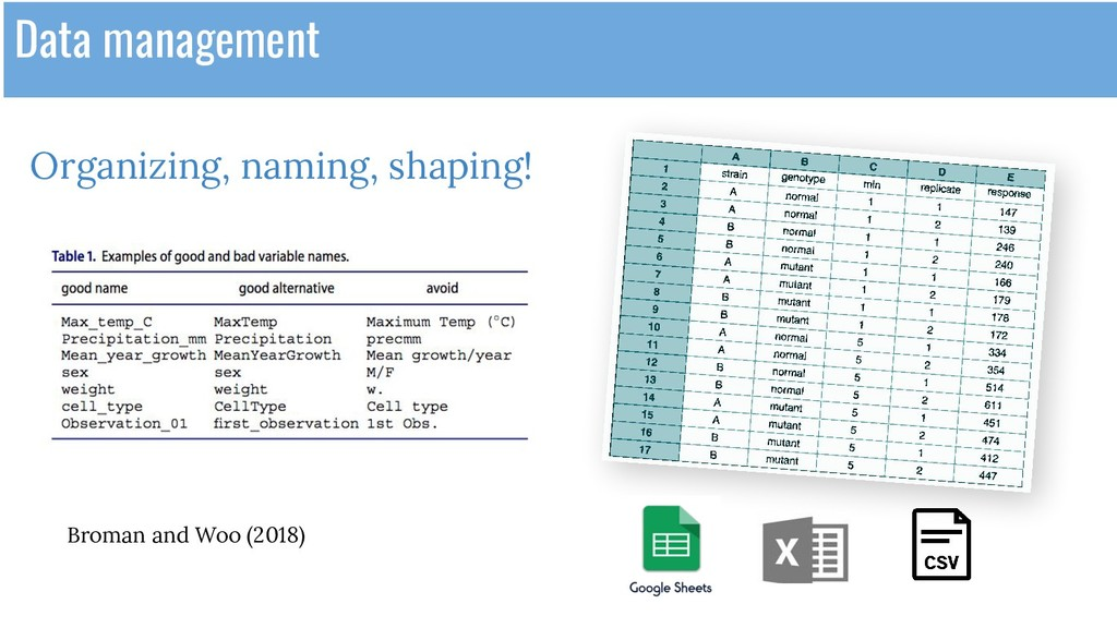 Organizing, naming, shaping! Data management Br...