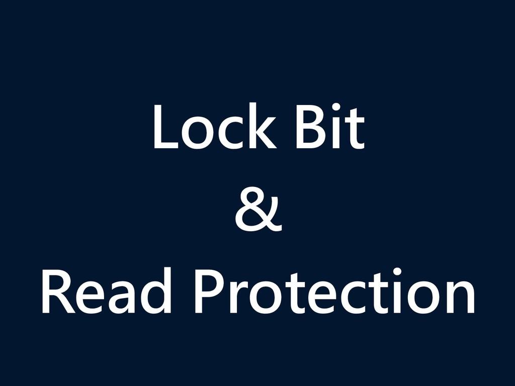 Lock Bit & Read Protection