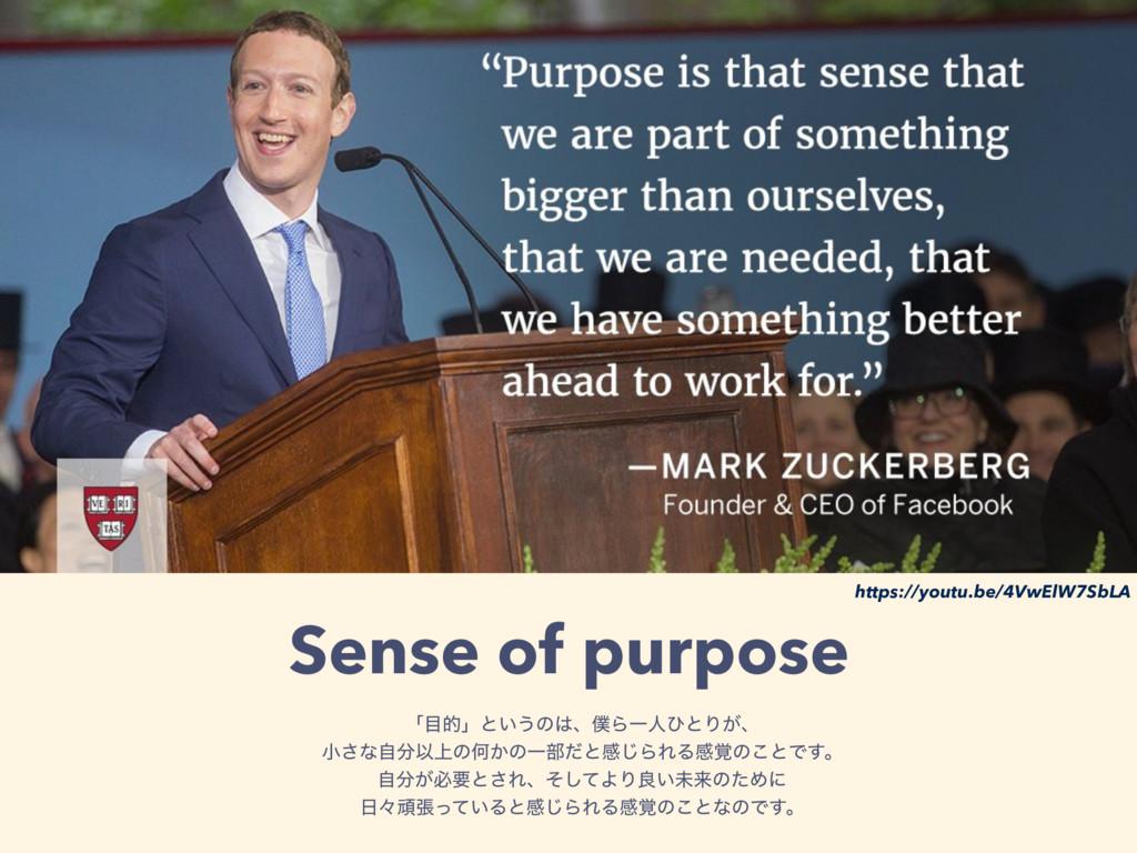 Sense of purpose ʮతʯͱ͍͏ͷɺΒҰਓͻͱΓ͕ɺ খ͞ͳࣗҎ্ͷԿ͔...