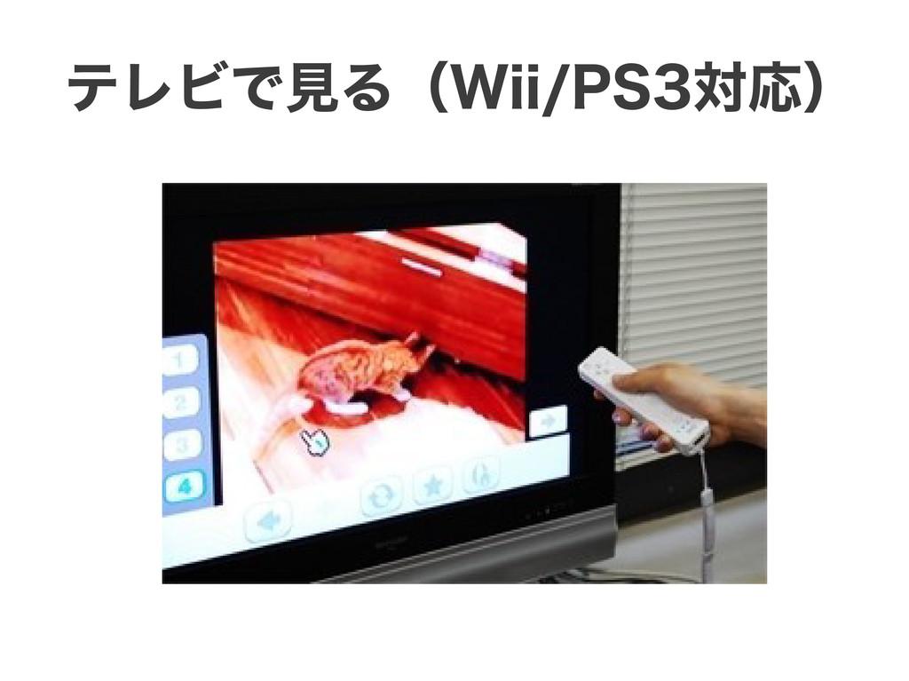 テレビで見る(Wii/PS3対応)