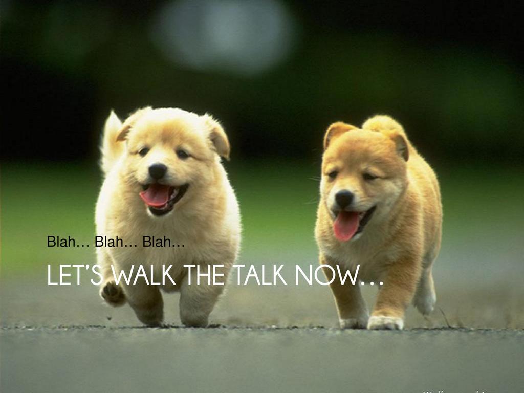 LET'S WALK THE TALK NOW… LET'S WALK THE TALK NO...