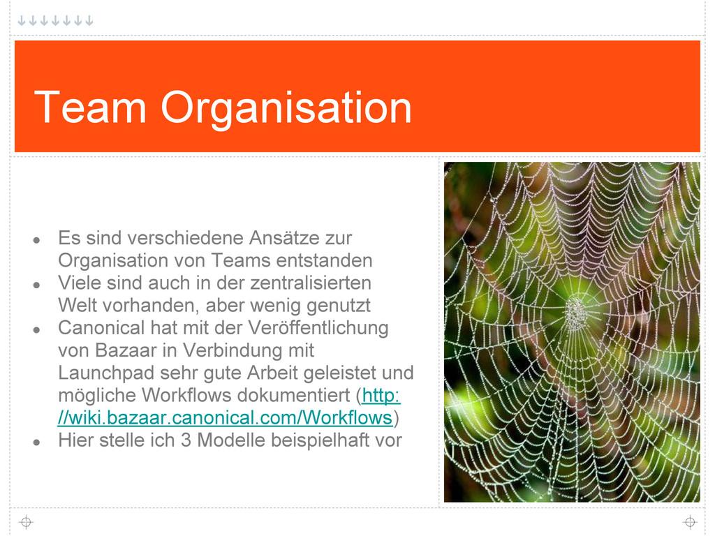 Team Organisation ● Es sind verschiedene Ansätz...