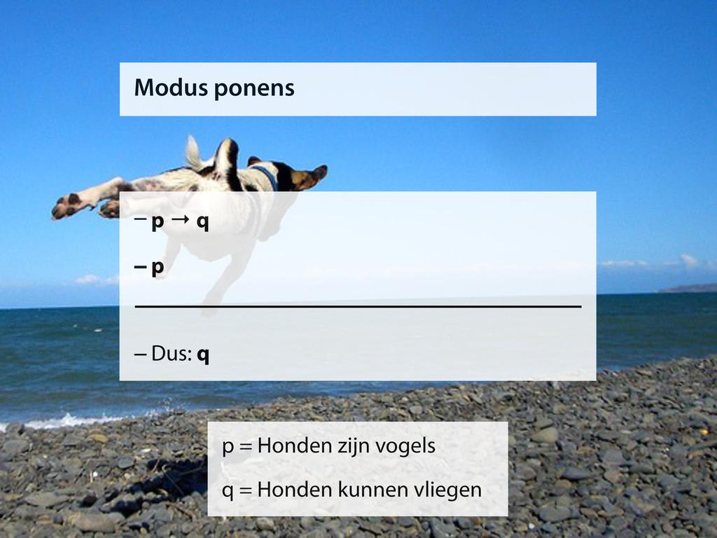 Modus ponens –p → q –p –Dus: q p = Honden zijn ...