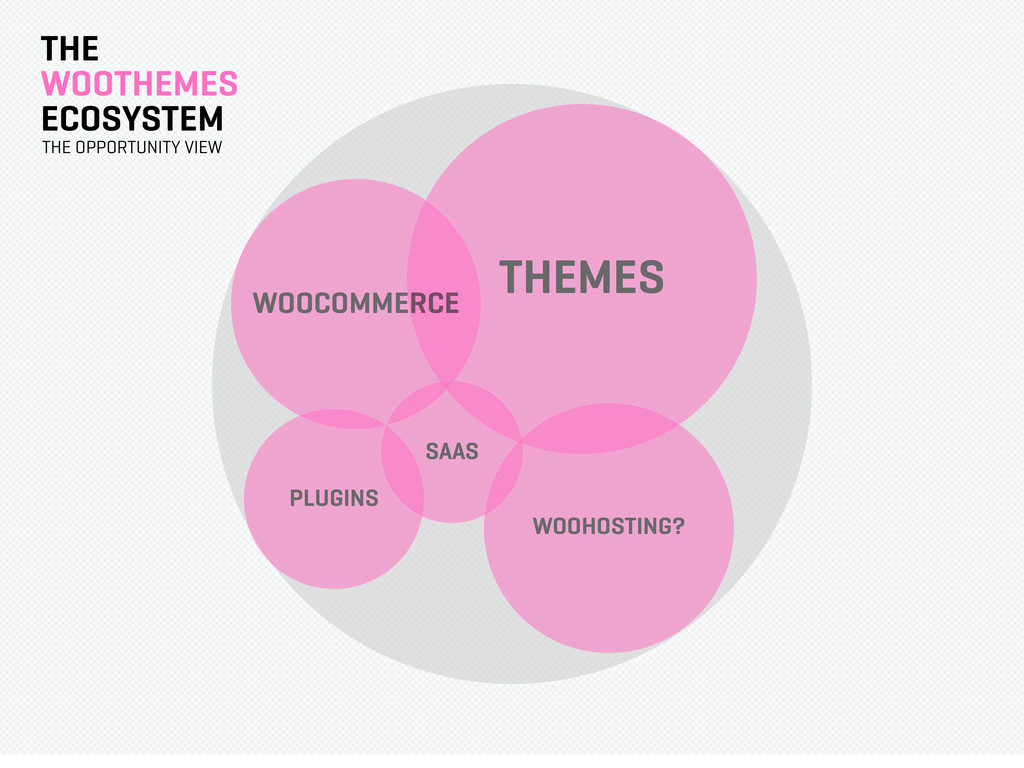 THE WOOTHEMES ECOSYSTEM THEMES THE OPPORTUNITY ...