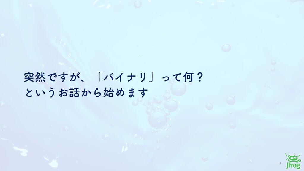 3 ಥવͰ͕͢ɺʮόΠφϦʯͬͯԿʁ ͱ͍͏͓͔ΒΊ·͢