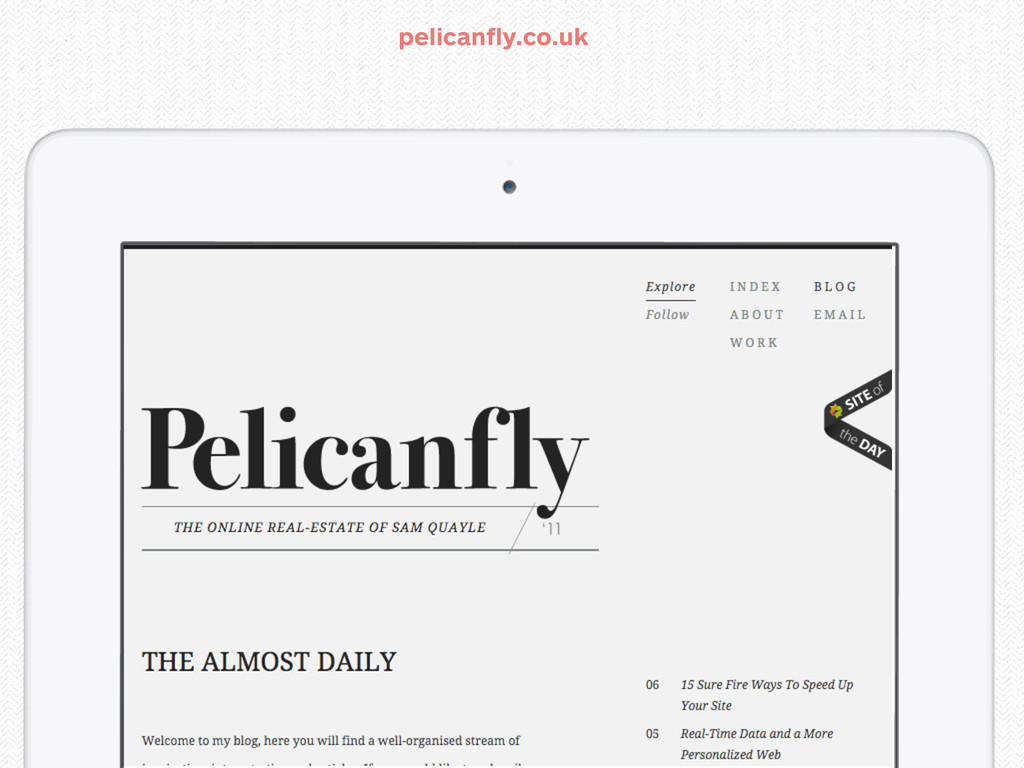 pelicanfly.co.uk