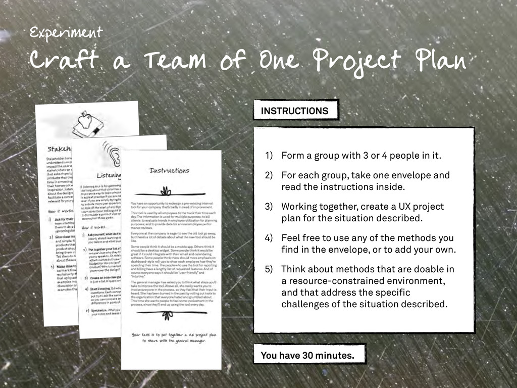 Experiment Craft a Team of One Project Plan INS...