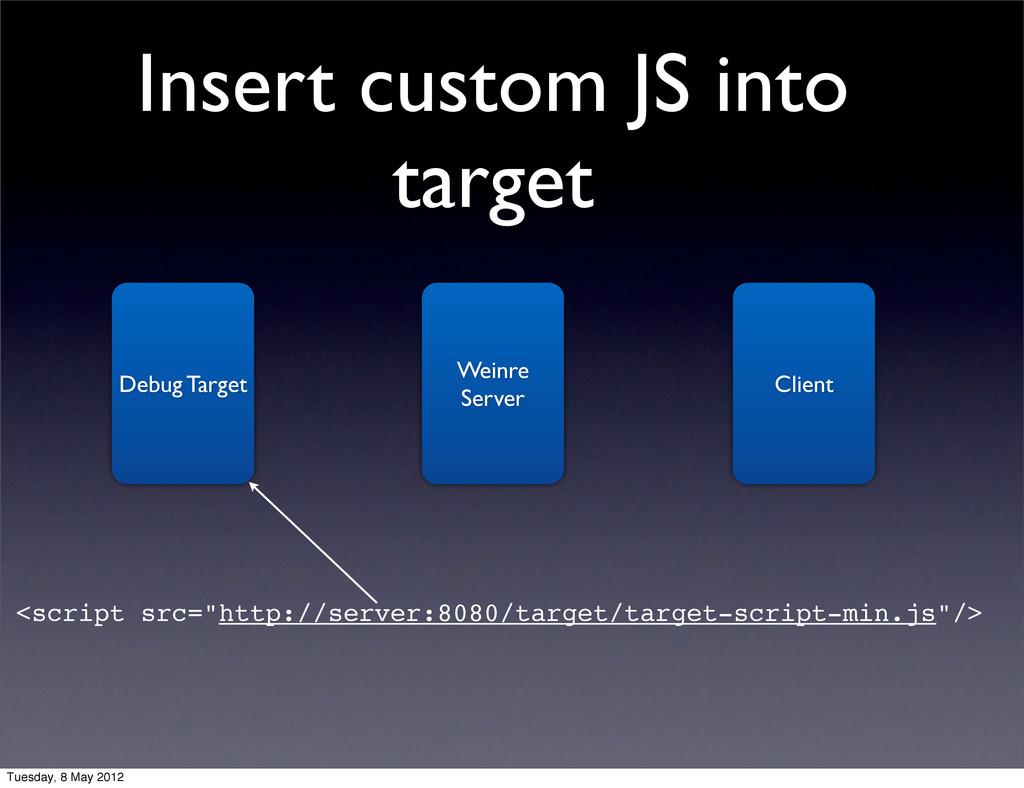 Insert custom JS into target Debug Target Weinr...