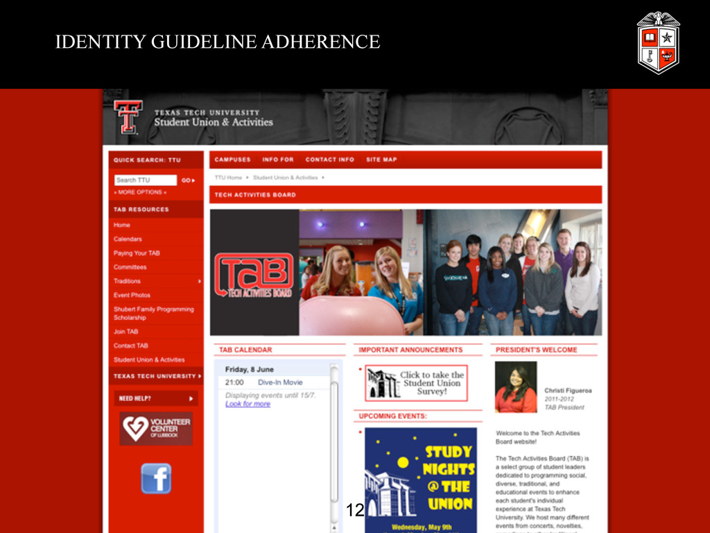 IDENTITY GUIDELINE ADHERENCE 12