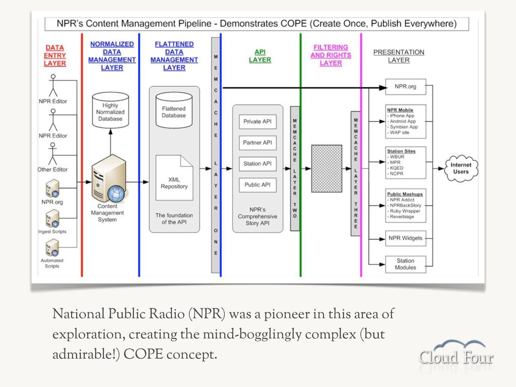 National Public Radio (NPR) was a pioneer in th...