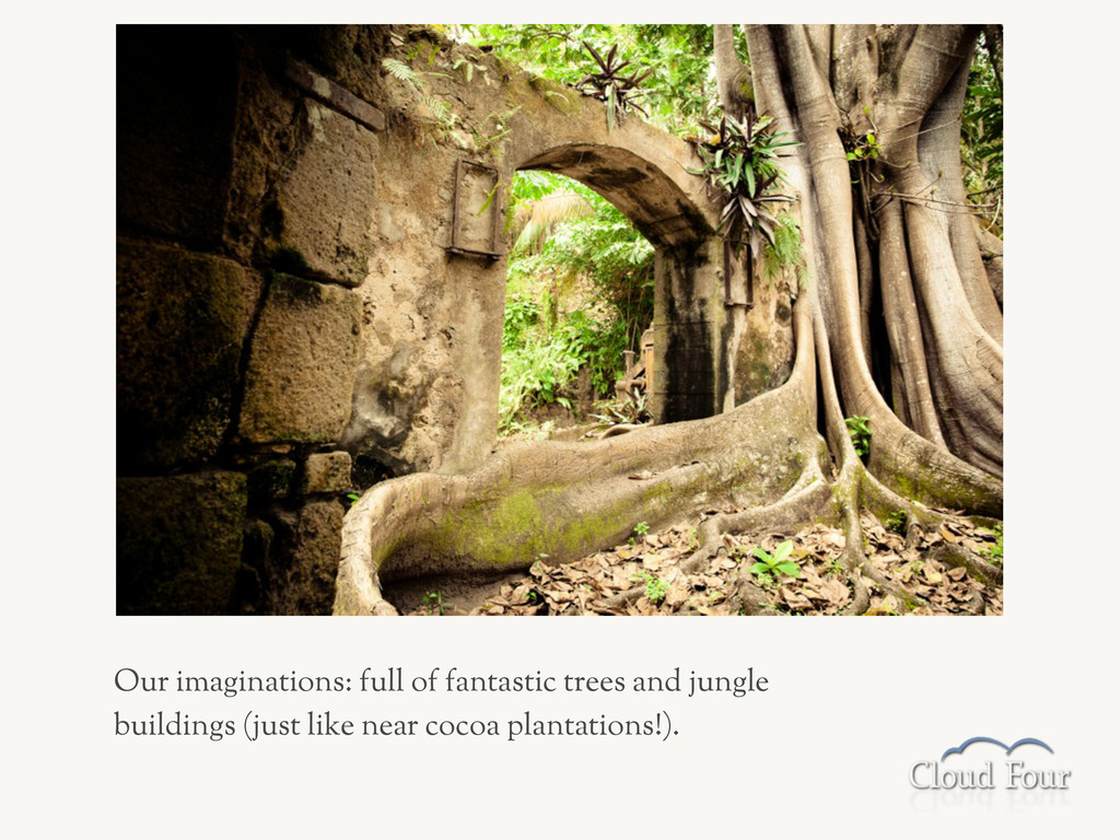 Our imaginations: full of fantastic trees and j...