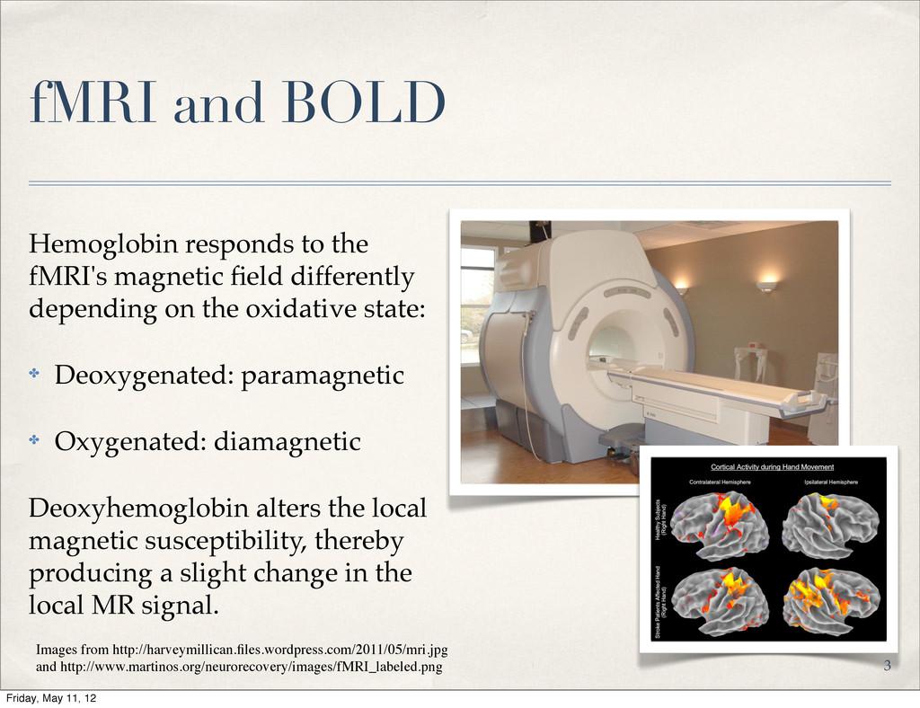 fMRI and BOLD Hemoglobin responds to the fMRI's...
