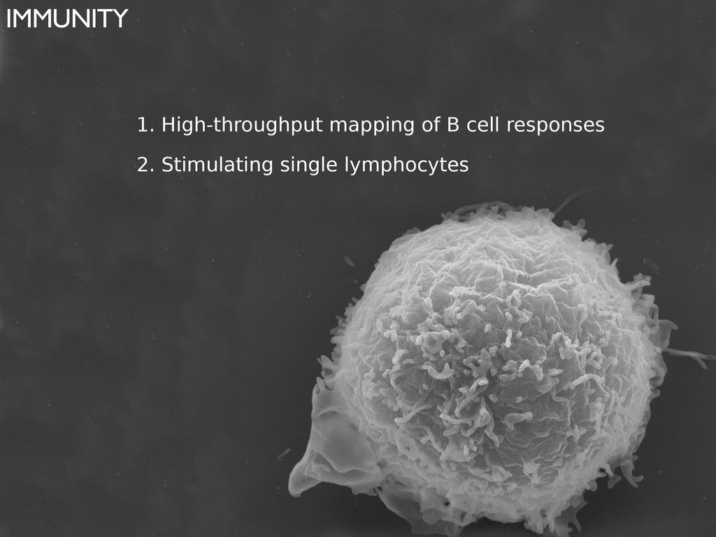 IMMUNITY 1. High-throughput mapping of B cell r...