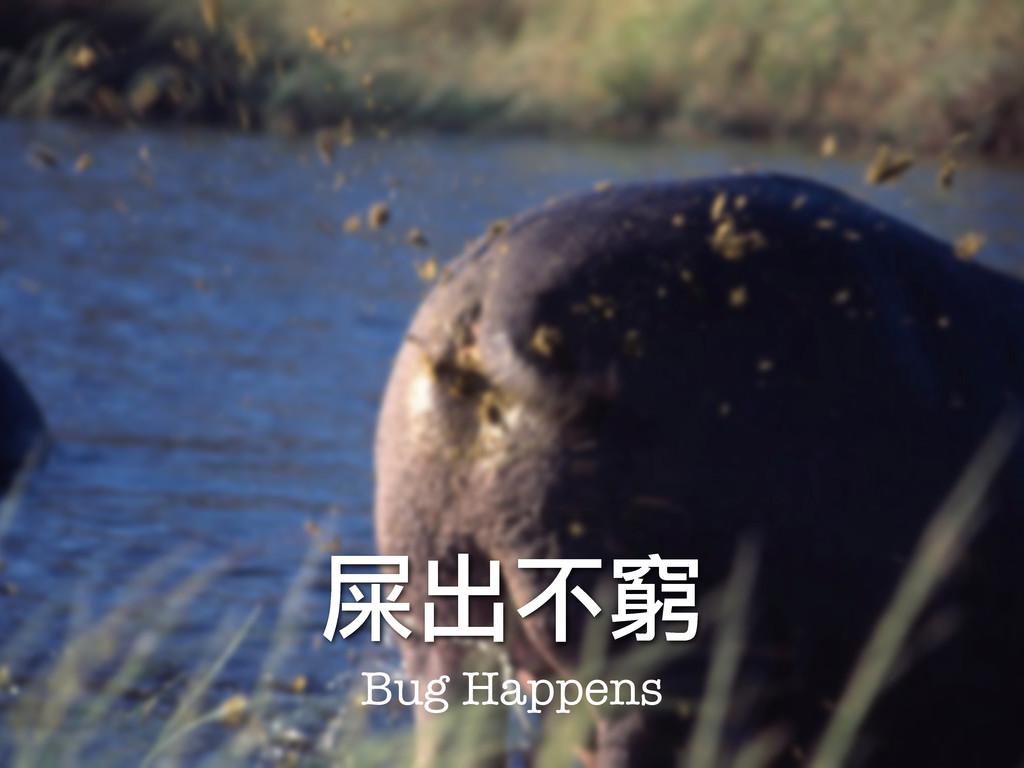 屎出不窮 Bug Happens