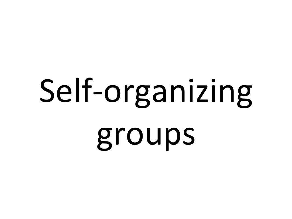 Self-‐organizing  groups