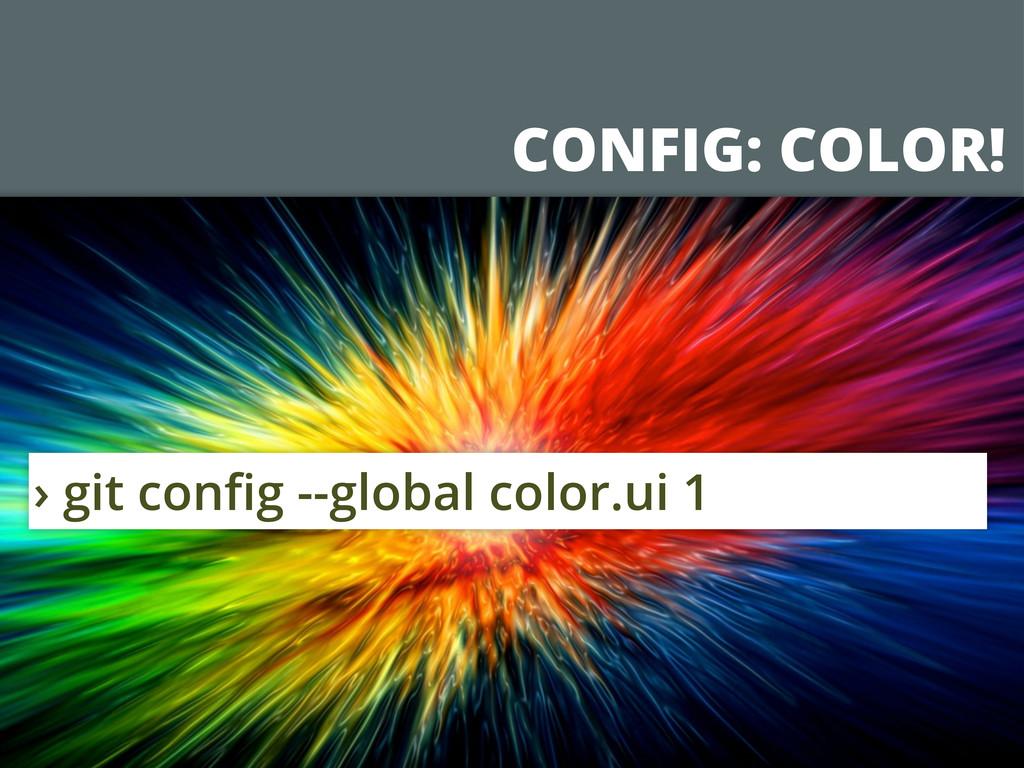 CONFIG: COLOR! › git config --global color.ui 1