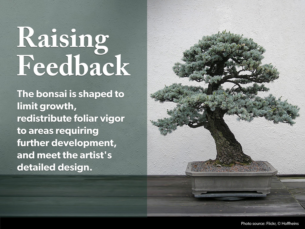 Raising Feedback The bonsai is shaped to limit ...