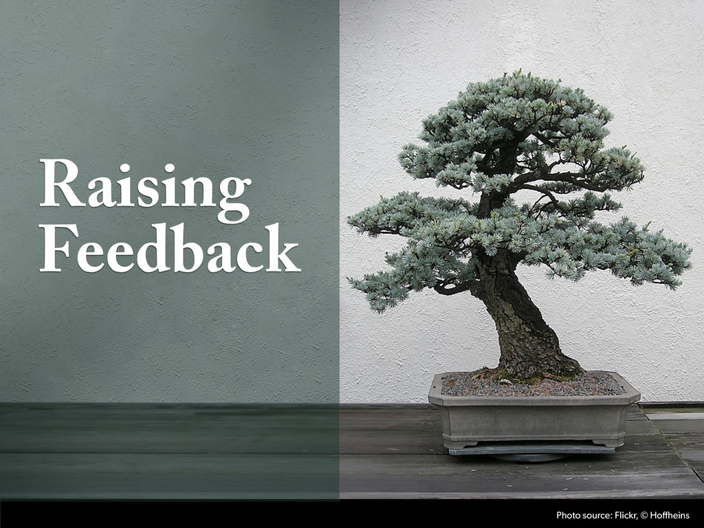 Raising Feedback Photo source: Flickr, © Hoffhe...