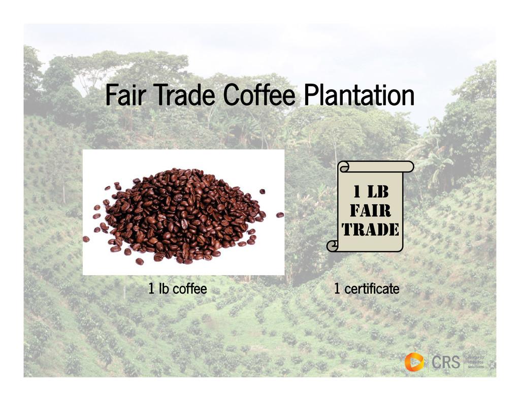 Fair Trade Coffee Plantation 1 LB FAIR TRADE TR...