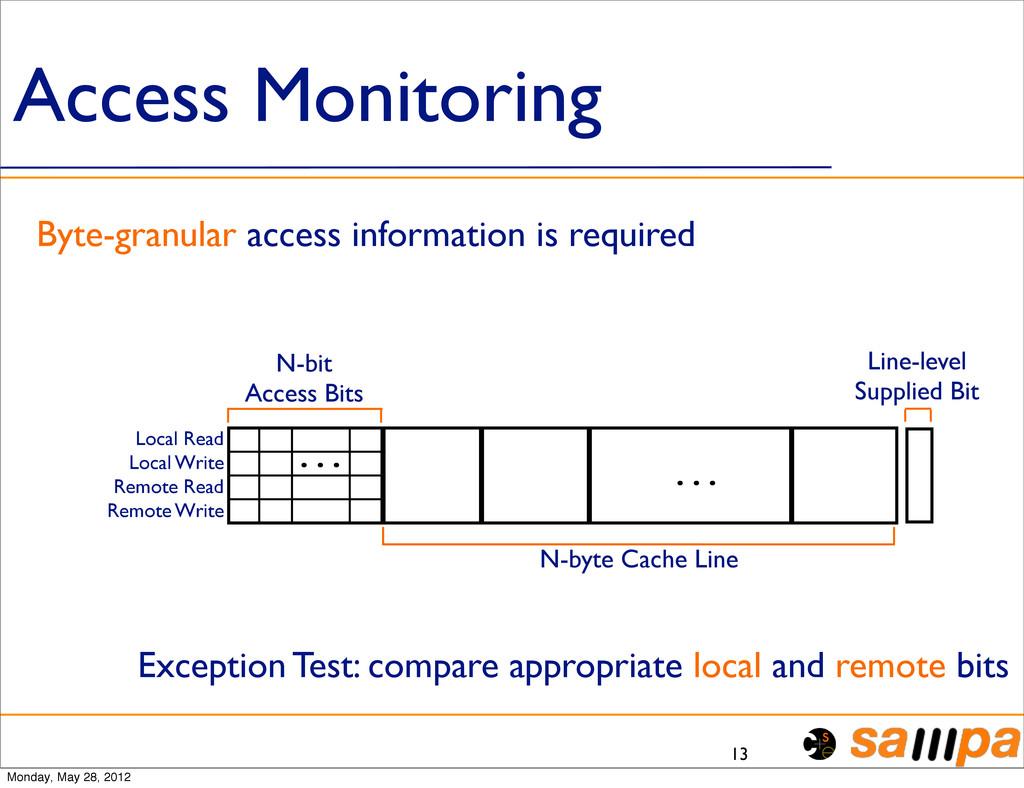 Access Monitoring 13 Byte-granular access infor...