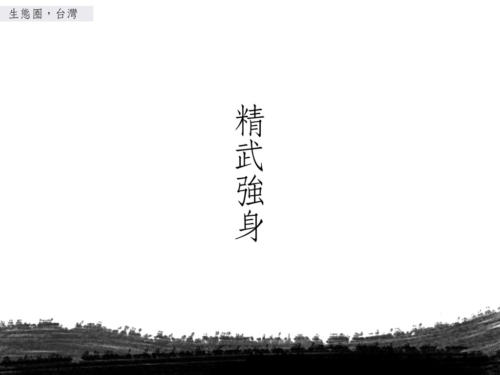精精 武 強 身 生態圈,台灣