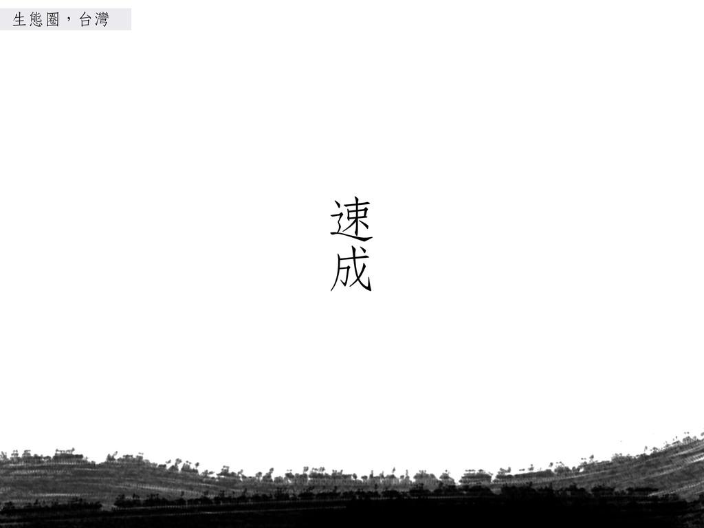 速 成 生態圈,台灣