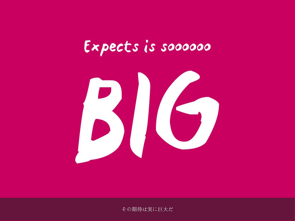 Expects is soooooo BIG ͦͷظ࣮ʹڊେͩ